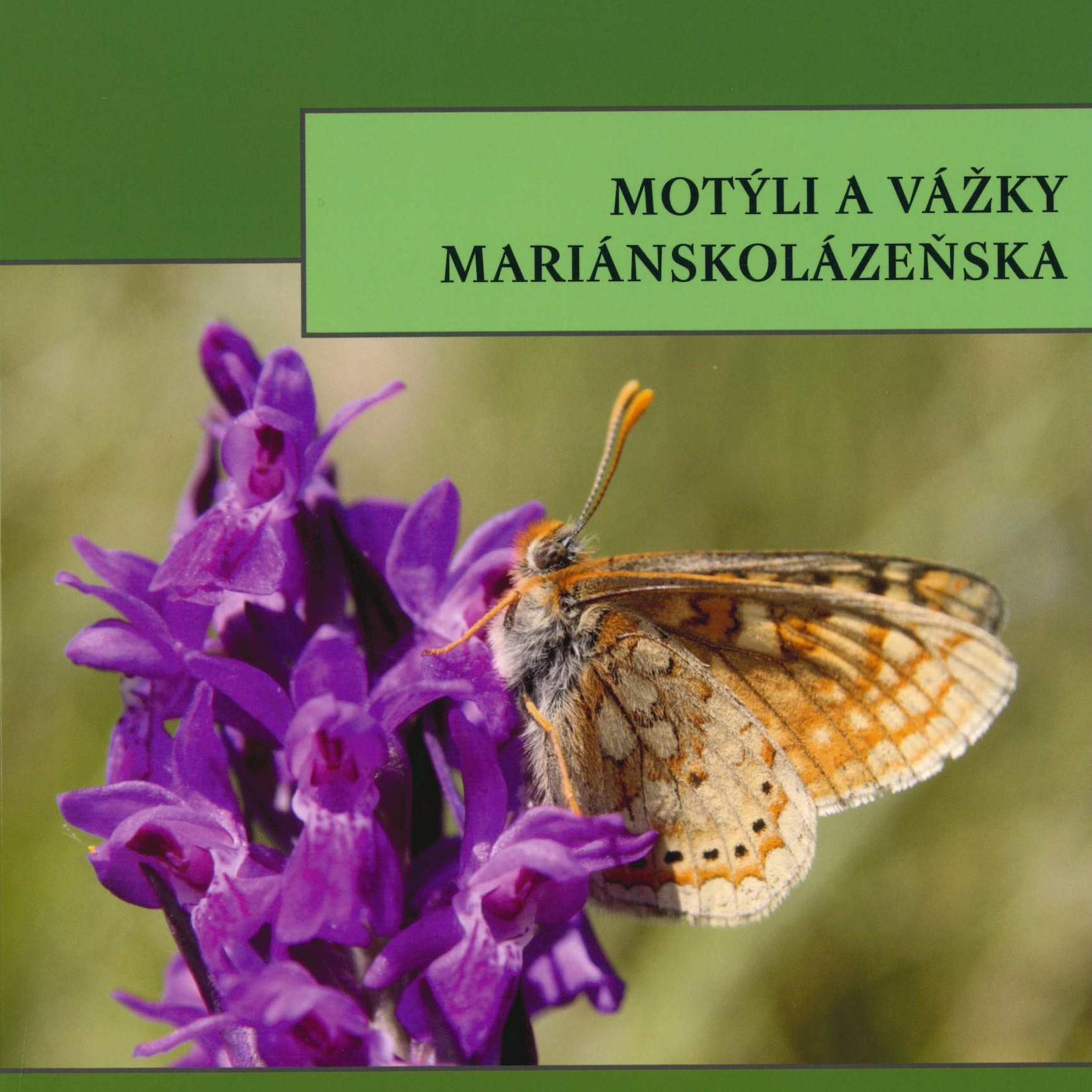 Motýli a vážky Mariánskolázeňska